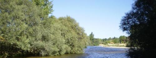 Río Alberche.