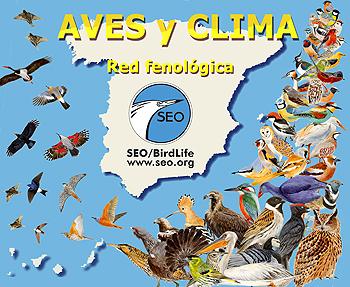 http://elguadarramista.files.wordpress.com/2009/08/aves-y-clima-seo.jpg