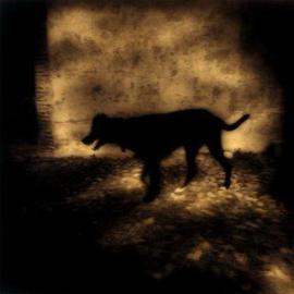 Figura de un perro negro.