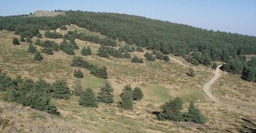 Cima del monte Abantos.