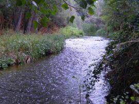 Río Guadarrama.