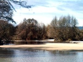 Río Alberche y bosque de rivera