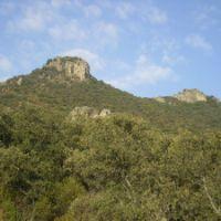 El Alcornoque, vigilante de Los Lanchares de Castilla