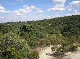 Vista de la Cuenca Alta del Manzanares, junto al AHN