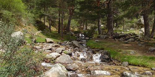 Río Navacerrada.