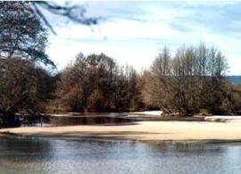 Rivera del río Alberche.