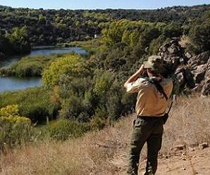Agente forestal vigilando una zona natural.