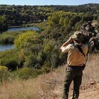 Los agentes forestales hacen balance: 54 multas en dos semanas