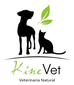 KineVet Vertical