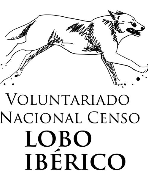 Voluntariado nacional censo lobo ibérico.