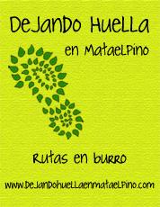 tarjeta_delantera_asociacion_elguadarramista