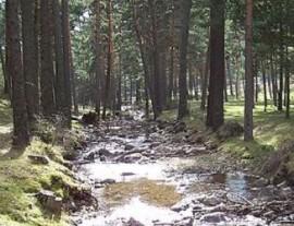 Río Moros a su paso por el municipio de El Espinar.