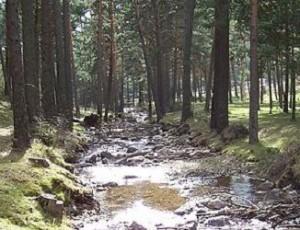 Río Moros en El Espinar.