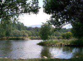 Río Lozoya a su paso por Rascafría.