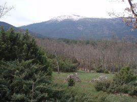 Peñalara desde el valle del Lozoya. (Foto: Miguel303xm).