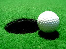 Los campos de golf constituyen para los ecologistas fuertes impactos ambientales.