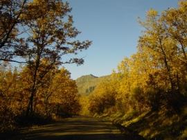 Hayedo de Montejo, en el corazón de la Sierra del Rincón.