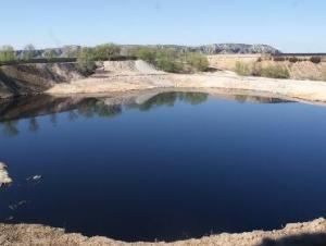 Laguna de aceite en Arganda del Rey. (Foto: Grefa).