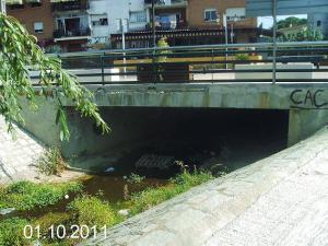Aspecto del arroyo a su paso por el centro de Pelayos de la Presa. (Foto Globalízate y ARBA).