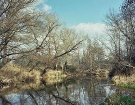 Río Jarama a su paso por Talamanca. (Foto: Rowanwindwhistler).