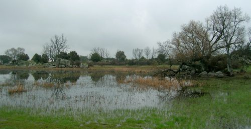 Lagunas de Castrejón.