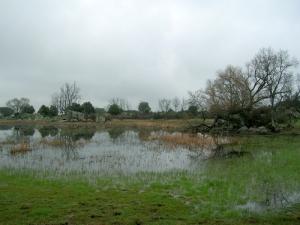 Laguna de Castrejón.