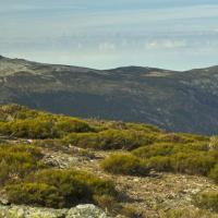 La Sierra Norte madrileña desde un objetivo