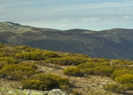 Paisaje de la Sierra Norte.