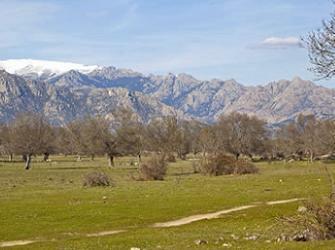 Dehesa Vieja de Moralzarzal, donde se pretende ubicar el campo de golf.