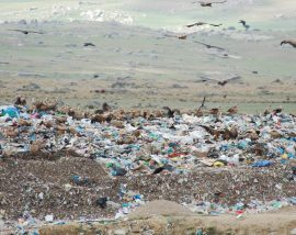 Los vertederos suponen una amenaza para el medio ambiente y la salud de las personas.