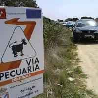 """Las vías pecuarias madrileñas, """"cada vez más degradadas por las construcciones"""""""