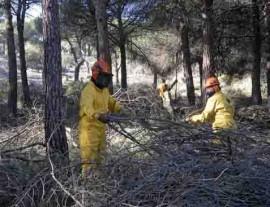 Las labores de desbroce reducen en gran medida el riego de incendio.