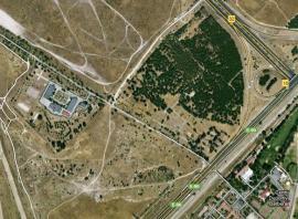 Terrenos que podría ocupar EuroVegas, que acabaría con un pinar maduro en las cercanías del aeródromo de Cuatro Vientos.