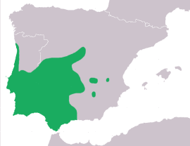 Distribución del tritón pigmeo.