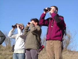La observación se aves es una de las actividades más habituales de la asociación.
