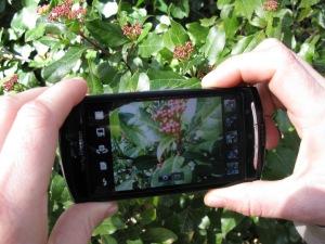 El Arboreto dará las claves sobre fotografía digital.