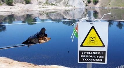 Laguna tóxica de Arganda del Rey antes de las labores de limpieza.