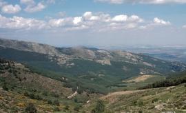 Puerto de la Morcuera.