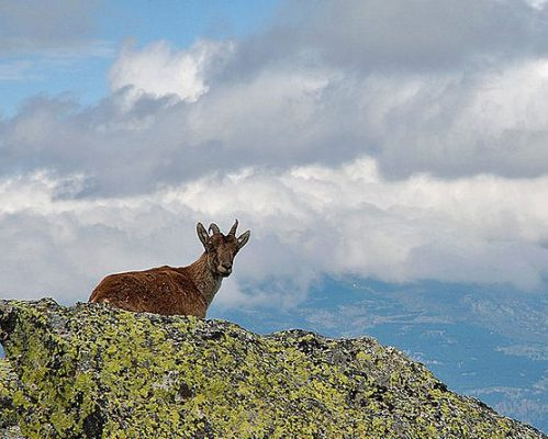 LXXIV Certamen Peñalara de Fotografía de Montaña