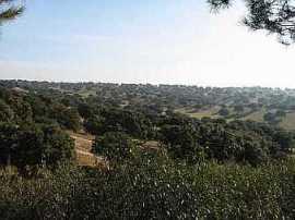 La finca se encuentra a la entrada del Monte del Pardo y dentro del de la Cuenca Alta del Manzanares.