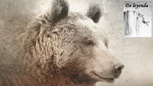 La leyenda del oso pardo del Guadarrama.