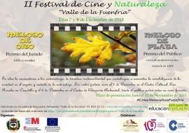 Cartel del festival de cine.