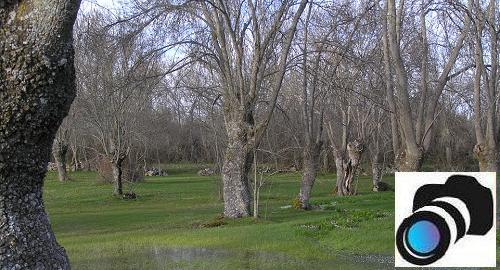 La fresneda, el ecosistema polivalente.