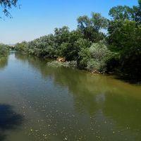 Microplásticos en ríos, un problema generalizado con posibles soluciones