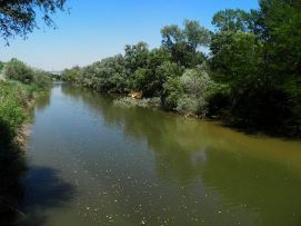Río Henares a su paso por Alcalá de Henares.