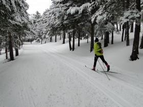 Esquí de fondo en Navafría.