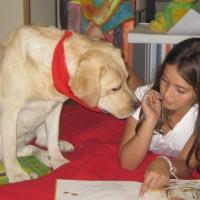 La adopción de animales en la Comunidad de Madrid aumenta un 30%