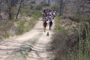 Camino de La Pedrona.