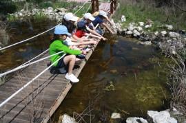 Unos niños observan una charca en el centro de recuperación de fauna salvaje de GREFA, en Majadahonda (Madrid). Foto: GREFA.