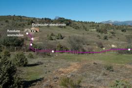Zona estudiada por los investigadores del MNCN. (Foto: Fernando Garrido).